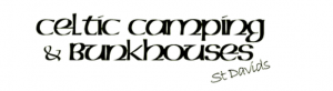 celtric camping logo