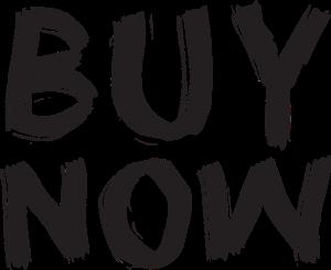 Buy Now Ecommerce Websites