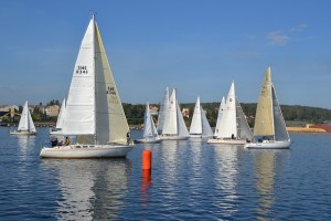 sailing-boats, businesses, social media