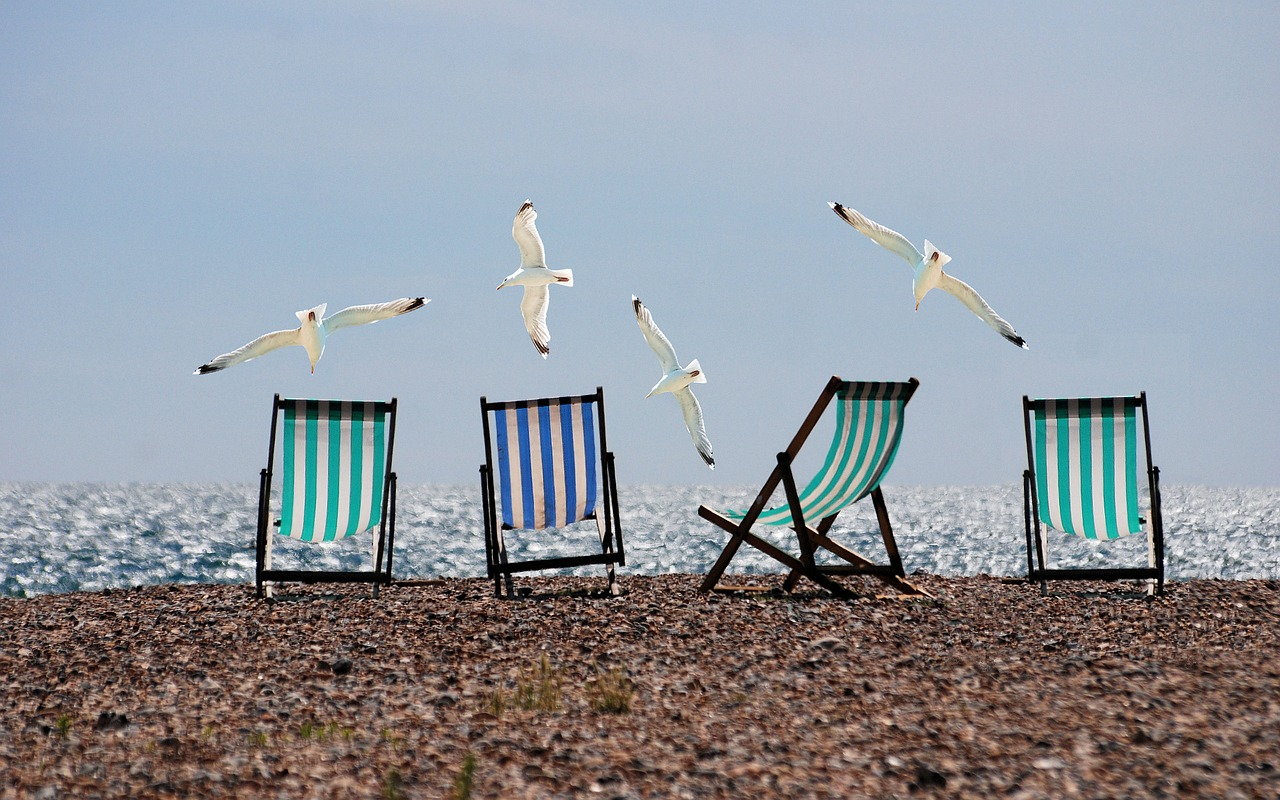 seagulls soaring over deckchairs on a pebble beach think about your digital marketing strategy for your travel business